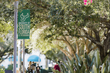 USF St. Pete teams up with local leaders to address racial inequities