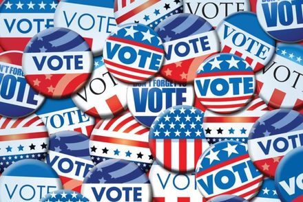 Here's who won out in the Pinellas County general election