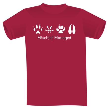 Mischief managed mockup